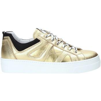 Sko Dame Lave sneakers Nero Giardini A909160D Guld