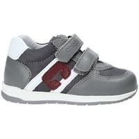 Sko Børn Lave sneakers Chicco 01062484000000 Grå