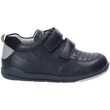 Sko Børn Høje sneakers Chicco 01062479000000 Blå