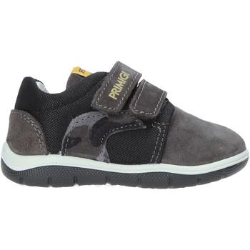 Sko Børn Lave sneakers Primigi 4361666 Grå