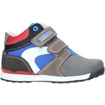 Sko Børn Høje sneakers Primigi 4451422 Grå