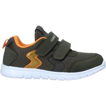 Sko Børn Lave sneakers Lumberjack SB55112 002 M67 Grøn