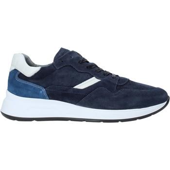 Sko Herre Lave sneakers Nero Giardini E001491U Blå