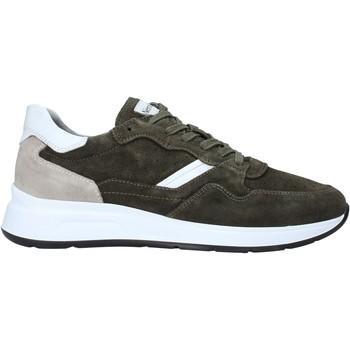 Sko Herre Lave sneakers Nero Giardini E001491U Grøn