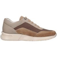 Sko Herre Lave sneakers CallagHan 91311 Beige
