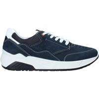 Sko Herre Lave sneakers IgI&CO 5132033 Blå