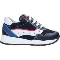 Sko Børn Lave sneakers Nero Giardini E023820M Blå