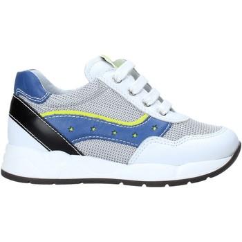Sko Børn Lave sneakers Nero Giardini E023820M hvid