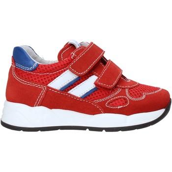Sko Børn Lave sneakers Nero Giardini E023830M Rød