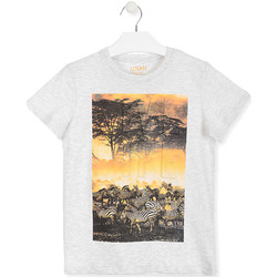 textil Børn T-shirts m. korte ærmer Losan 013-1017AL hvid