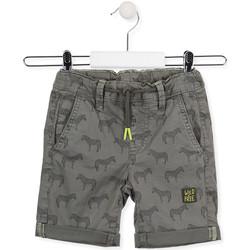 textil Børn Shorts Losan 015-9006AL Grøn