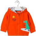 Sweatshirts Losan  017-6026AL