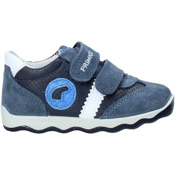 Sko Børn Lave sneakers Primigi 5352922 Blå