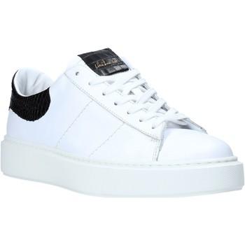 Sko Herre Lave sneakers Maritan G 210286MG hvid
