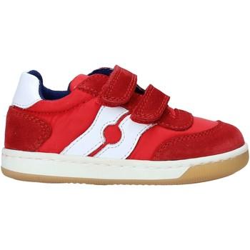 Sko Børn Lave sneakers Falcotto 2014666 01 Rød