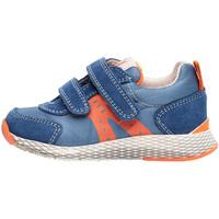 Sko Børn Lave sneakers Naturino 2014902 01 Blå
