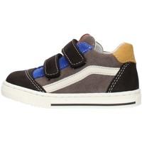 Sko Dreng Lave sneakers Balocchi 602211 Multicolored