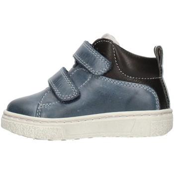Sko Dreng Lave sneakers Balocchi 601729 Blue
