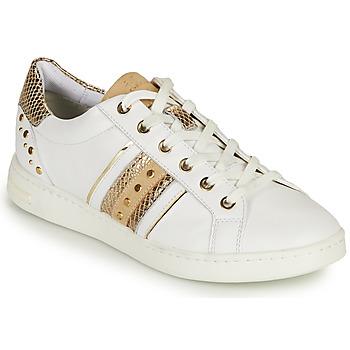 Sko Dame Lave sneakers Geox D JAYSEN A Hvid / Guld