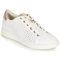 Sko Dame Lave sneakers Geox D JAYSEN B Hvid / Guld