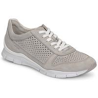Sko Dame Lave sneakers Geox D SUKIE B Grå