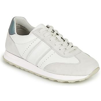 Sko Herre Lave sneakers Geox U FIDENZA B Hvid / Blå