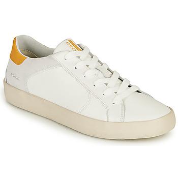 Sko Herre Lave sneakers Geox U WARLEY A Hvid