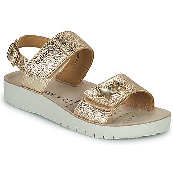 Sandaler til børn Geox  SANDAL COSTAREI GI
