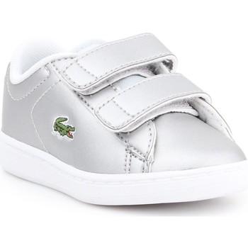 Sko Børn Lave sneakers Lacoste Carnaby EVO 317 6 SPI 7-34SPI0006334 silver