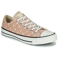 Sko Dame Lave sneakers Converse CHUCK TAYLOR ALL STAR CANVAS BRODERIE OX Beige