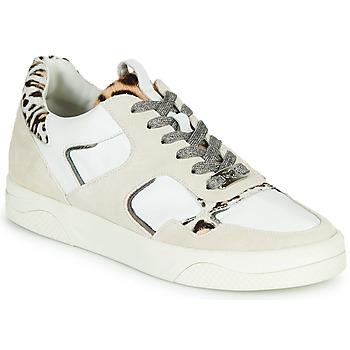 Sko Dame Lave sneakers Mam'Zelle ARTIX Hvid / Leopard