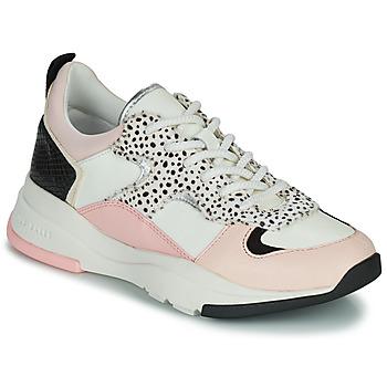Sko Dame Lave sneakers Ted Baker IZSLA Hvid / Pink