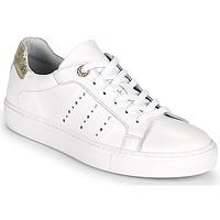Sko Dame Lave sneakers Myma PEGGUI Hvid / Guld
