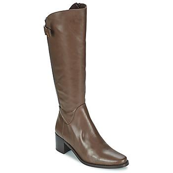 Sko Dame Chikke støvler Betty London SALINA Brun