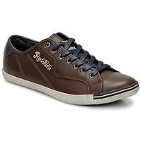 Sko Herre Lave sneakers Redskins UPWARD Brun / Navy