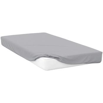 Indretning Stræklagen Belledorm Double BM114 Platinum