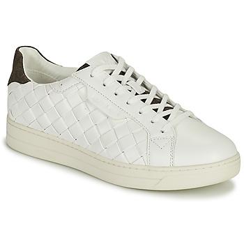 Sko Dame Lave sneakers MICHAEL Michael Kors KEATING LACE UP Hvid / Brun