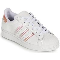 Sko Pige Lave sneakers adidas Originals SUPERSTAR J Hvid / Iriserende