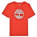 T-shirts m. korte ærmer Timberland  LOLLA