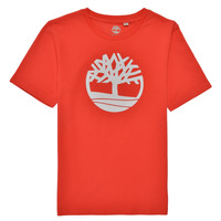 textil Dreng T-shirts m. korte ærmer Timberland LOLLA Rød