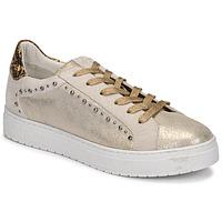 Sko Dame Lave sneakers Regard HAVRES Guld