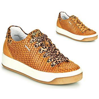 Sko Dame Lave sneakers IgI&CO SHOUHAI Okker