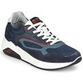 Sneakers IgI CO  COCULA