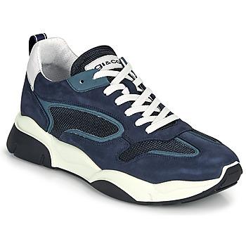 Sko Herre Lave sneakers IgI&CO COQUELIA Blå