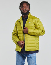 textil Herre Dynejakker Levi's OASIS Grøn