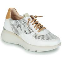 Sko Dame Lave sneakers Hispanitas TELMA Hvid / Guld