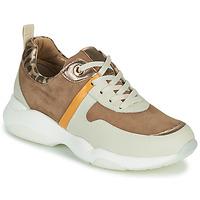 Sko Dame Lave sneakers JB Martin WILO Brun