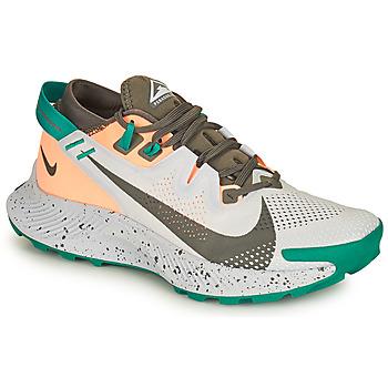Sko Dame Løbesko Nike NIKE PEGASUS TRAIL 2 Blå / Grøn