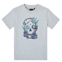 textil Dreng T-shirts m. korte ærmer Ikks XS10243-21-C Grå