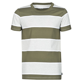 textil Herre T-shirts m. korte ærmer Esprit T-SHIRTS Kaki